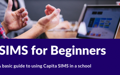 SIMS for beginners course
