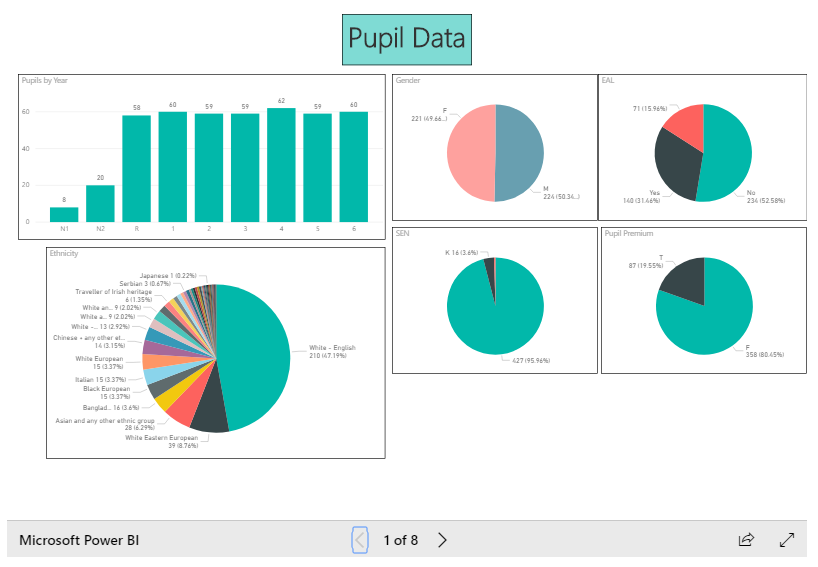 SIMS assessment data dashboard example